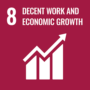 SDG 8. Decent Work and Economic Growth