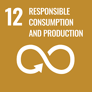 SDG 12. Responsible Consumption and Production