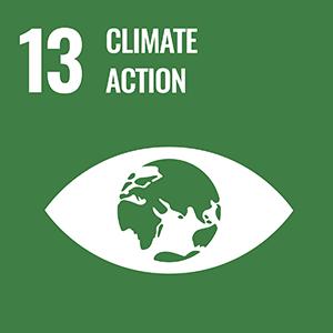 SDG 13. Climate Action